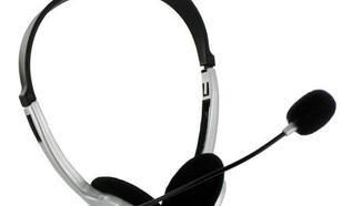 4World Słuchawki z mikrofonem i regulacją głośności srebrne 02994