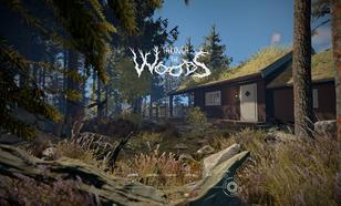Recenzja Through the Woods – W Poszukiwaniu Espona
