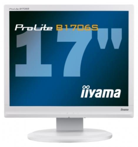Iiyama ProLite B1706S