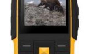 Aligator R20 eXtremo Dual SIM Czarno-żółty (AR20BY)