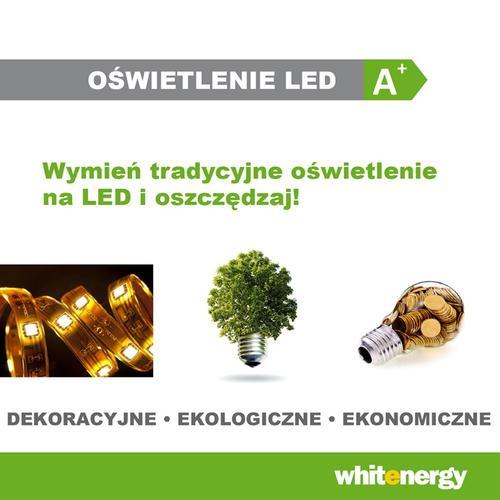 Whitenergy Zasilacz sieciowy do pasków LED 12W | 12V DC | 1A | wewnętrzny