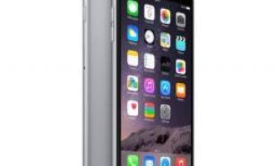 Apple iPhone 6 Plus 64GB Gwiezdna szarość (MGAH2PK/A)